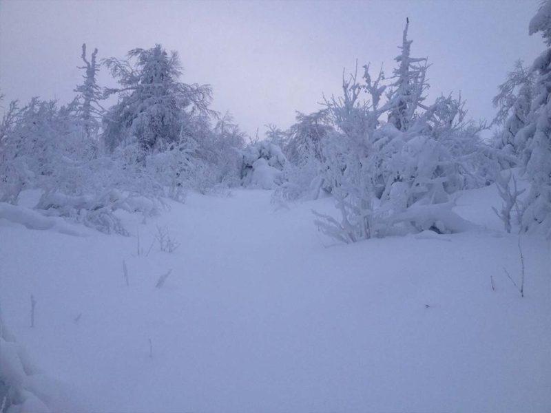 Подъём на Ослянку Южный склон