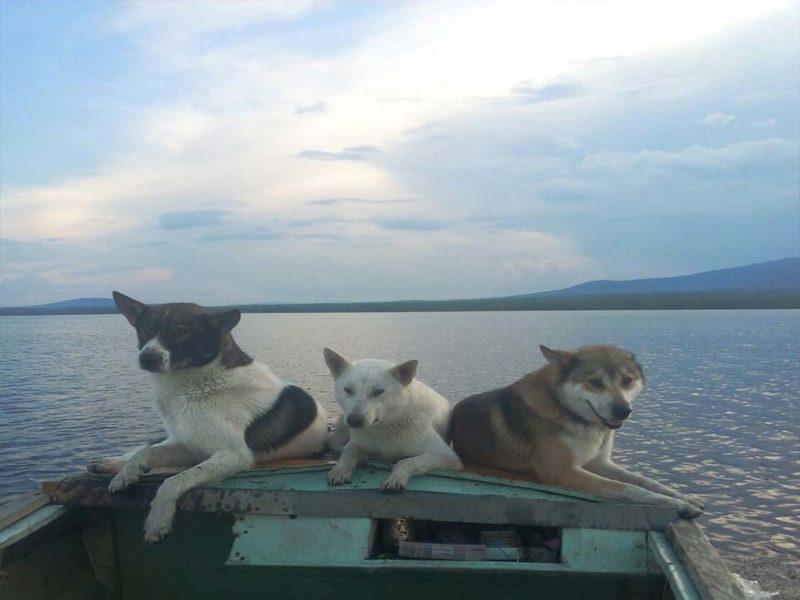 Озеро Турват