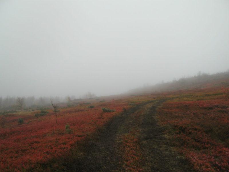 Подъём на перевал Дятлова
